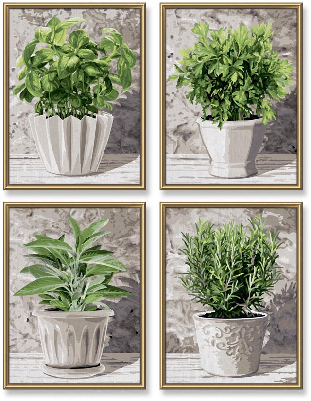 Schipper Раскрашивание по номерам - Кулинарные травы в горшках, 18х24 см, 4 картины